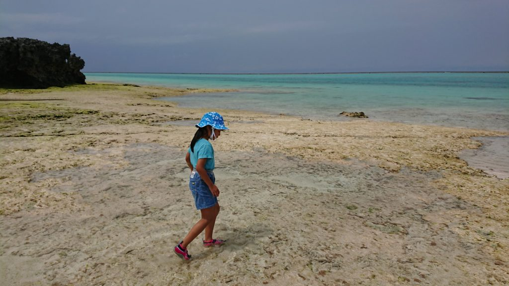 与論島の浜下り
